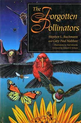 forgotten-pollinators