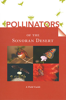 pollinators-of-the-sonoran-desert-275x415