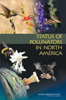 status-of-pollenators